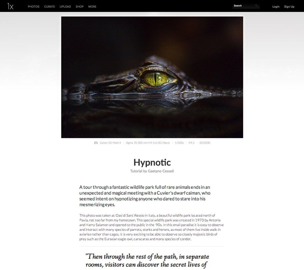 Hypnotic è pubblicata su 1x.com nella sezione Learning (Tutorial)