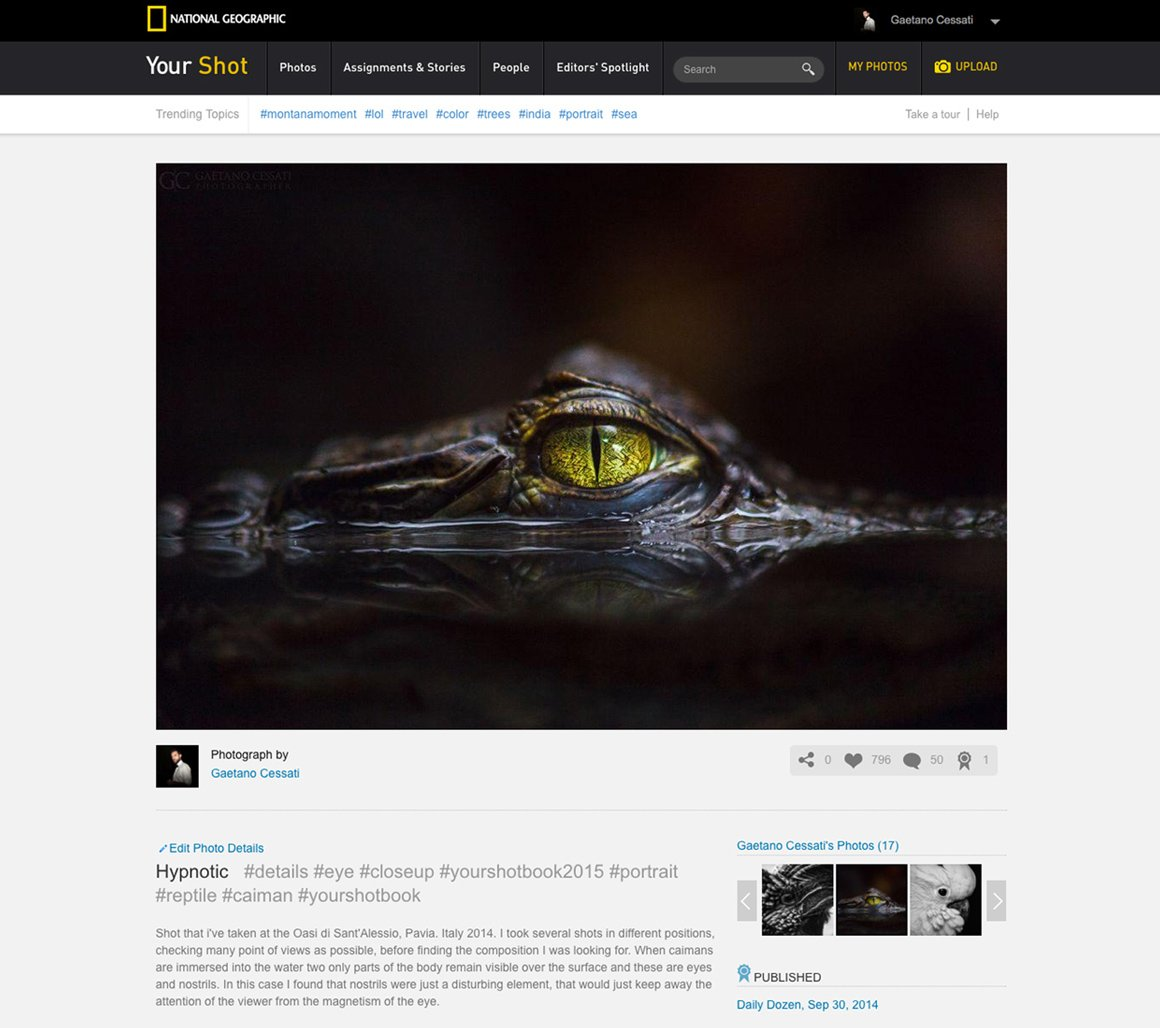National Geographic pubblica Hypnotic per il DAILY DOZEN, Settembre 2014