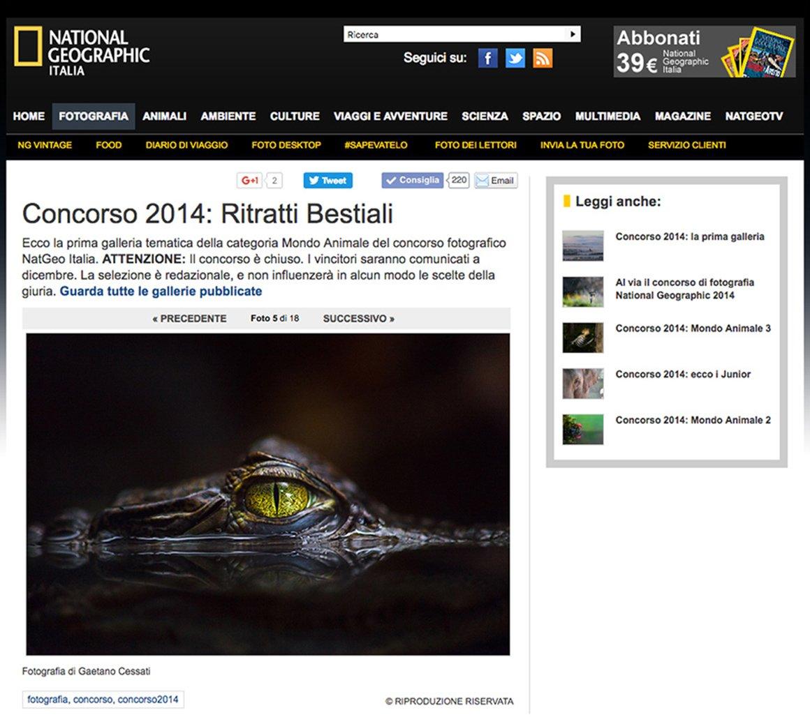 Hypnotic selezionata da National Geographic Italia per la galleria tematica RITRATTI BESTIALI. Concorso 2014